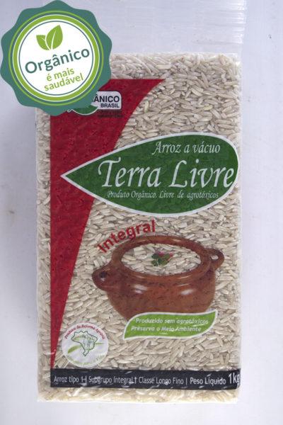 arroz_integral_vacuo