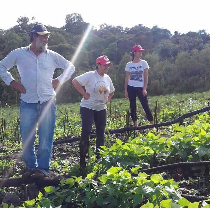 Familia Almeida na plantação de feijão