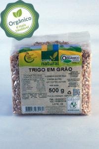 trigo_grao