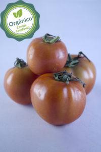 tomate_organico