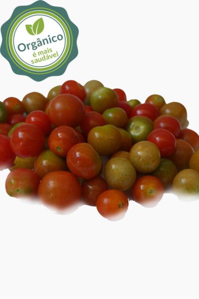 tomate_cereja_COOMAFITT