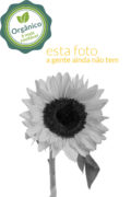 #falta_produto_organico
