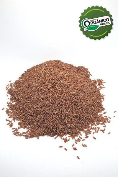 _EA_4841_arroz vermelho granel 500g_COOPRAV_com selo