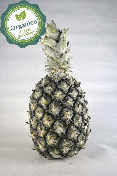 abacaxi_organico
