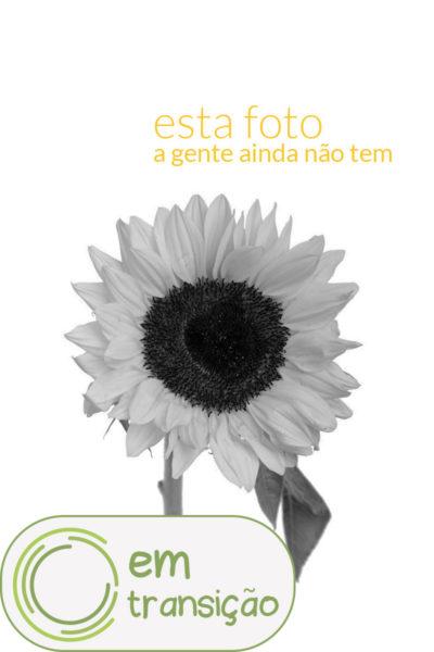 falta_foto_transicao