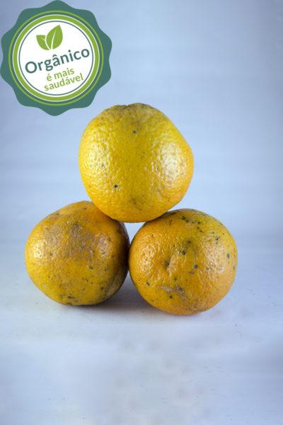 laranja de umbigo
