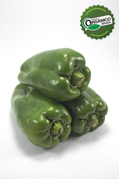_EA_4520_pimentão verde 500g_henz orgânicos_com selo