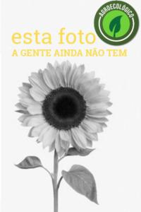 FALTA_esta_foto_agroecologico