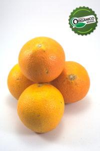_EA_4615_laranja de umbigo 1kg_COONALTER_com selo