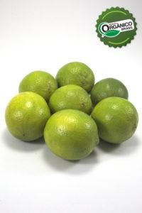 _EA_4537_limão taiti kg_henz orgânicos_com selo