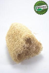 _EA_5763_bucha vegetal_com selo